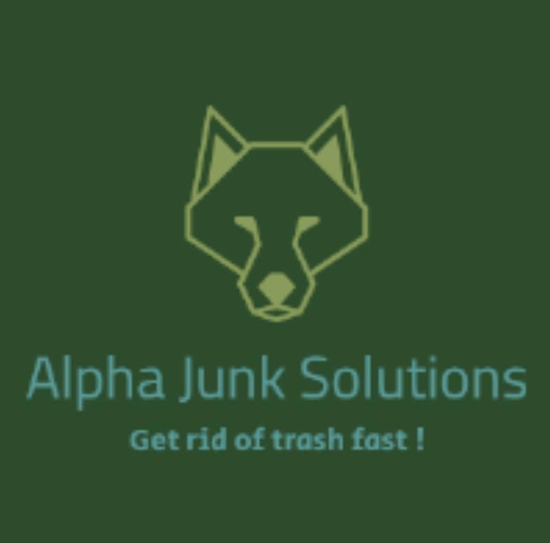 Alpha Junk Solutions 1